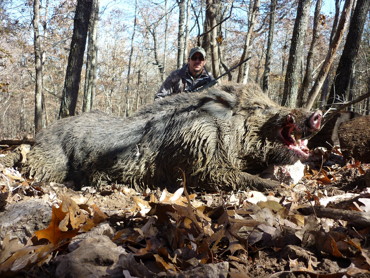 July 2015 news RB Russian Boar