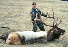 The Alternative to Guided Elk Hunting Trips out West