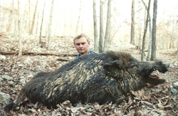 Russian Boar Hunt at High Adventure Ranch