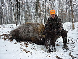 Winter Bison Hunt at High Adventure Ranch