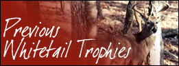 Whitetail Trophies