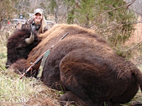 Trophy Buffalo Hunting at High Adventure Ranch